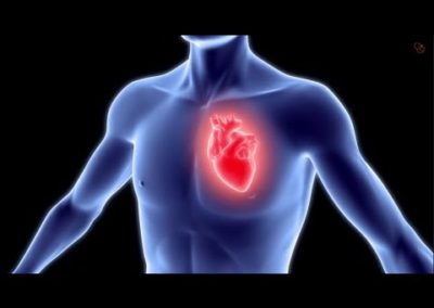 hart fysio sintmichielsgestel