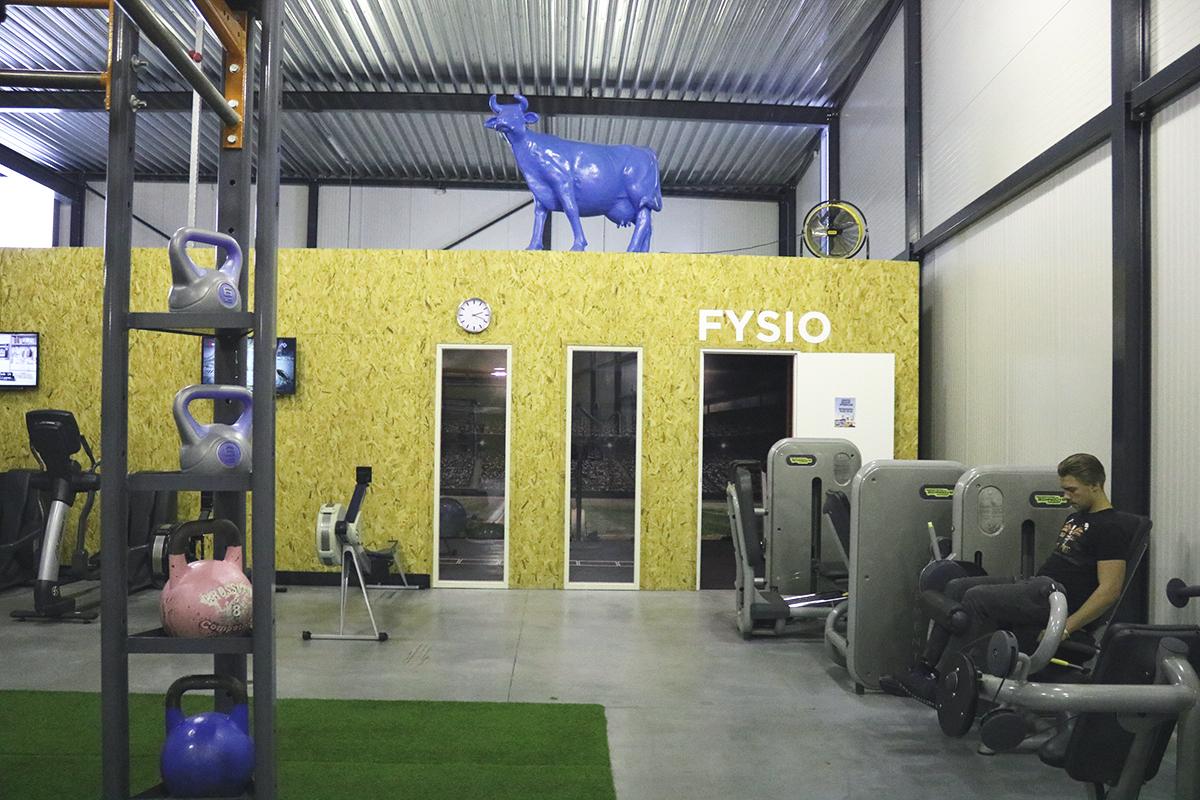 Sportvereniging Fysio Sint-Michielsgestel